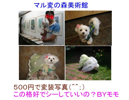 f0087044_1164043.jpg