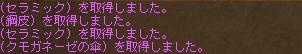 b0069074_2129937.jpg