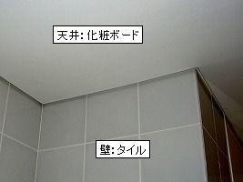b0003400_1973170.jpg