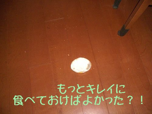 c0065512_18112672.jpg
