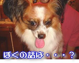 f0011845_0414162.jpg