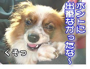 f0011845_050201.jpg