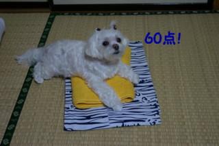 f0005727_17112939.jpg