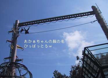 d0061544_18463010.jpg