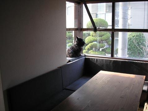 家づくりのためには建築家、そこで勉強会_e0051760_2025598.jpg
