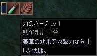 b0062614_126980.jpg