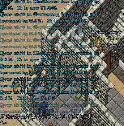 d0076924_2022421.jpg