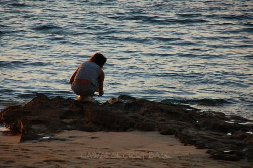 North Shore Beauty_f0015440_17595823.jpg