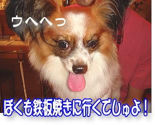 f0011845_0513559.jpg