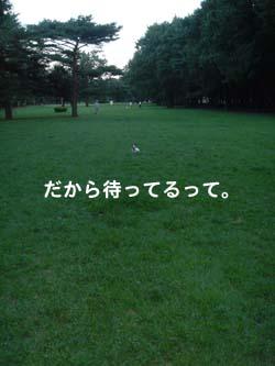b0098652_23384921.jpg