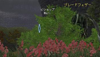 f0015592_015748.jpg