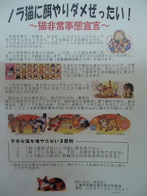 ノラ猫と地域猫_c0010936_14411327.jpg