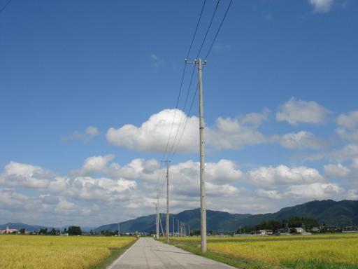 秋の道_a0014840_17111893.jpg