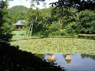2006年9月15日(金)・・・京都旅行3日目_f0060461_20272698.jpg