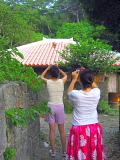 再び沖縄 パート3_d0046025_8225084.jpg