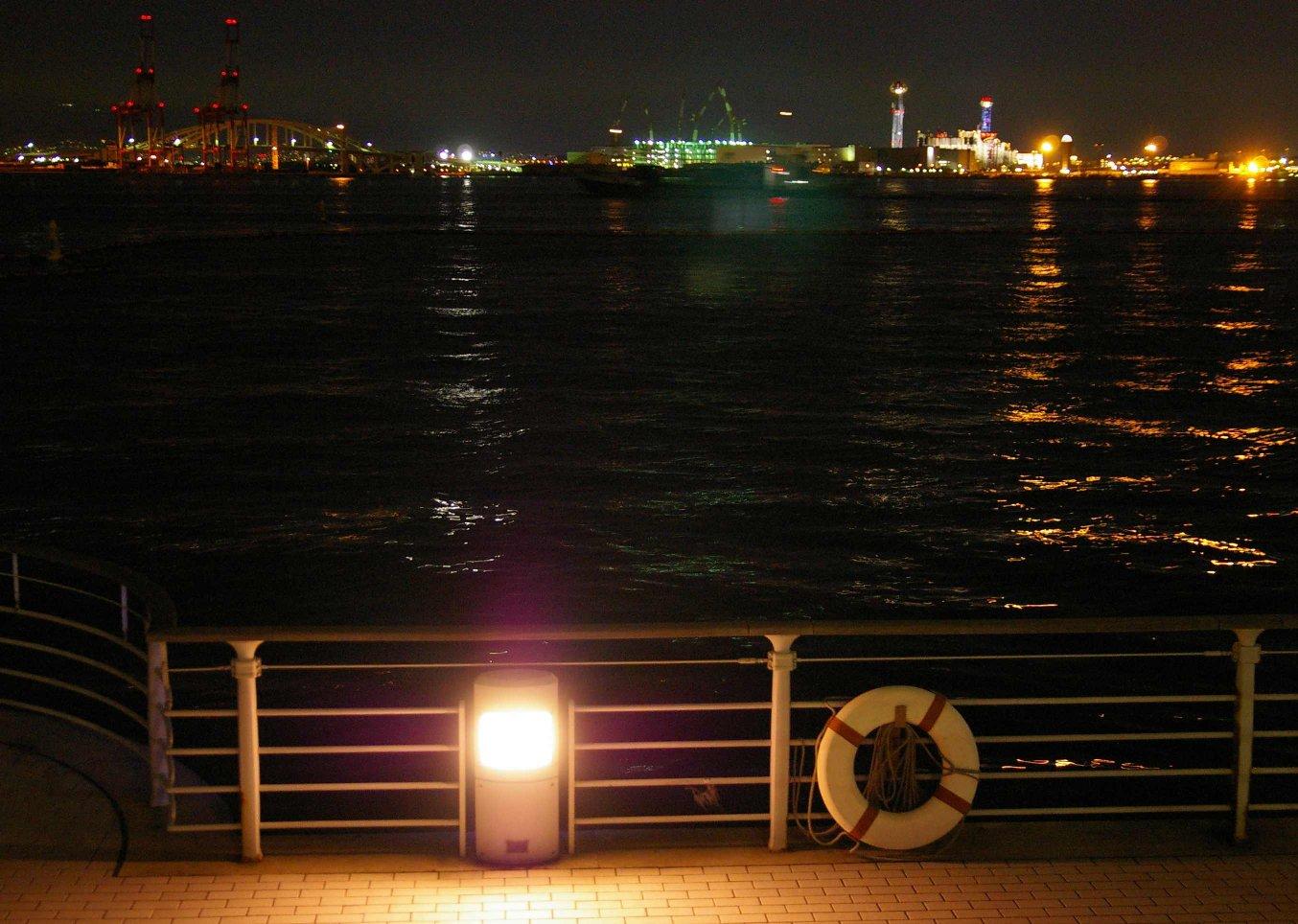 コスモ~中ノ島の夜景_b0069128_11363517.jpg