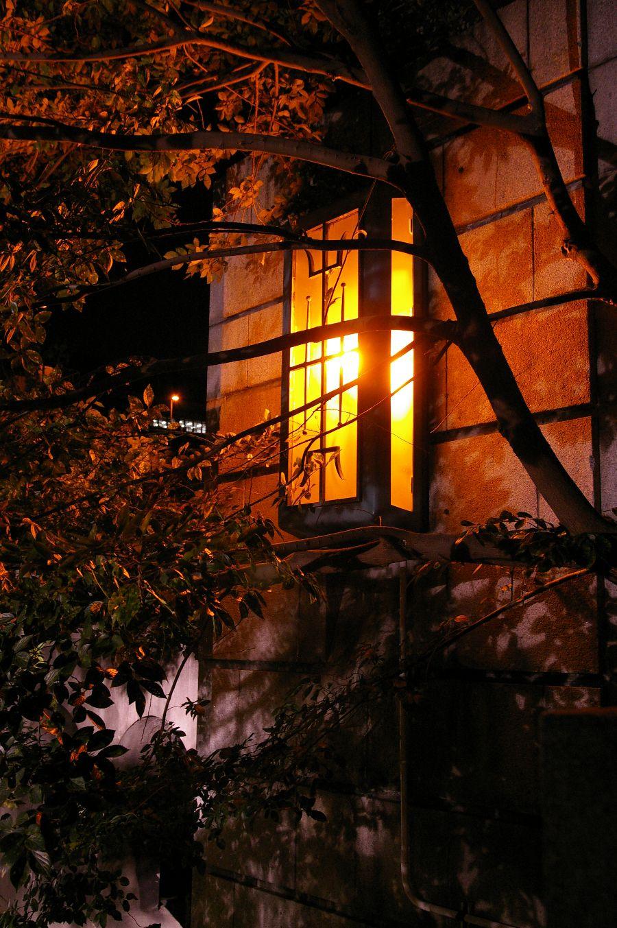 コスモ~中ノ島の夜景_b0069128_11415732.jpg