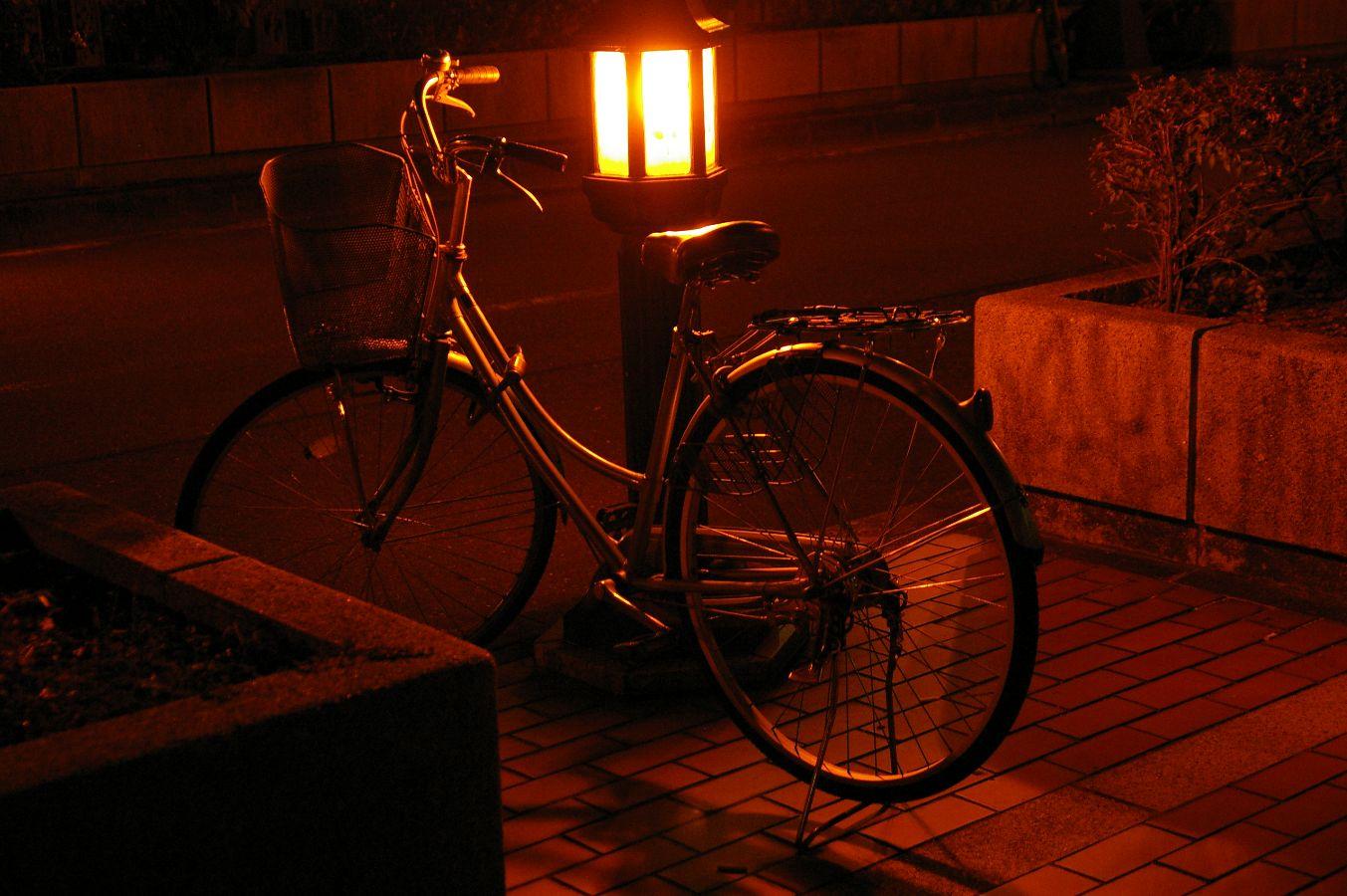 コスモ~中ノ島の夜景_b0069128_11474424.jpg