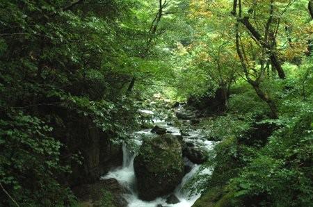 ■ 2006年9月例会 大屋町_a0072950_12102085.jpg