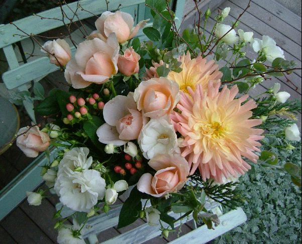 オークリーフ(美しすぎるバラ・アンブリッジローズ)_f0049672_1133369.jpg