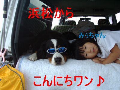 b0090201_924105.jpg