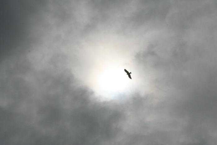雲と雨の休日_e0077521_202836100.jpg