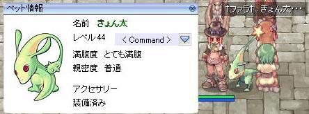 f0063248_23332632.jpg