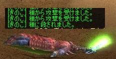 f0060649_19525281.jpg