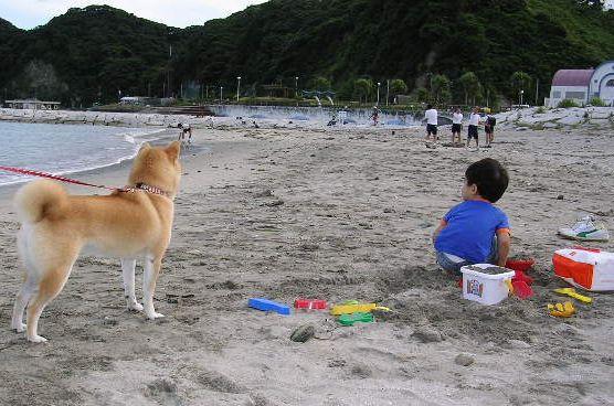 2006年9月18日(月)・・・3連休_f0060461_21474546.jpg