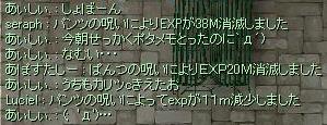 e0048268_1124826.jpg