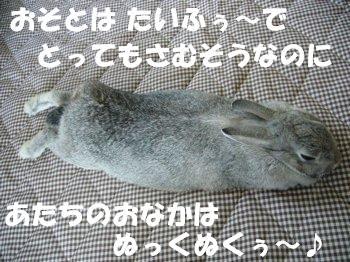 b0081503_1612561.jpg