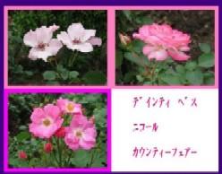 b0086427_23121061.jpg