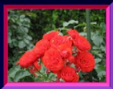 b0086427_23132575.jpg