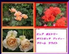 b0086427_23152170.jpg
