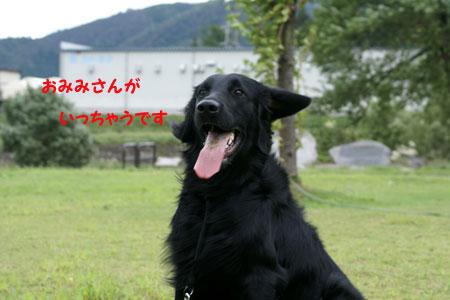 f0018144_10434993.jpg