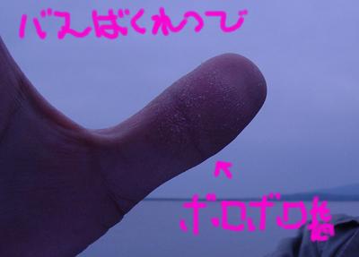 d0091788_20521490.jpg