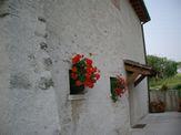 Treviso_d0085401_20523878.jpg
