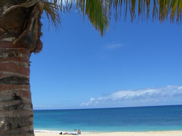 in Hawaii_a0088007_024246.jpg