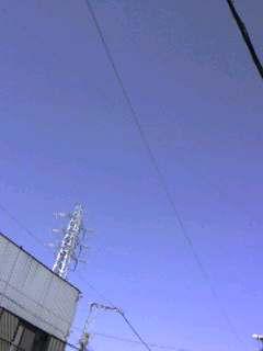 f0012127_1020450.jpg