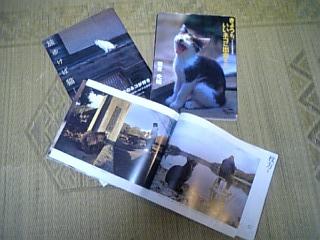 f0065201_237526.jpg