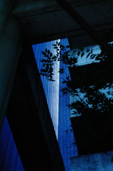 通りすがりの三条通で。_f0032011_2164783.jpg