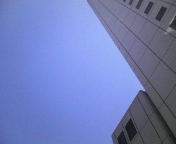 嵐のような一日_c0052615_1736355.jpg