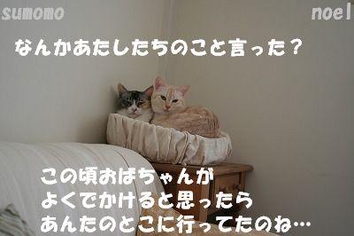 f0063729_15135297.jpg