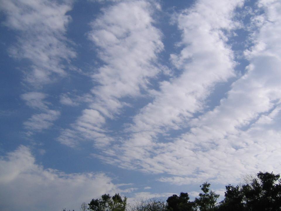 秋の空は・・・_d0047885_18511283.jpg