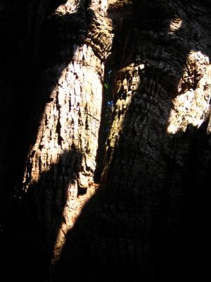 三樹まいり~三樹物語~_d0047811_2225869.jpg