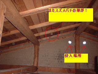 f0031037_16233676.jpg