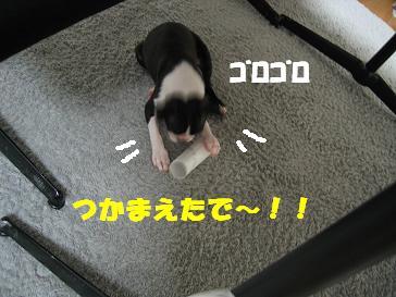 c0092097_2318357.jpg