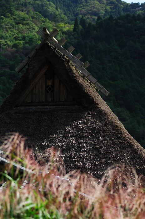 初秋の美山・世間はやはり狭かった!_f0032011_18592027.jpg