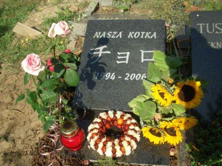 墓石建立_b0017215_22483271.jpg