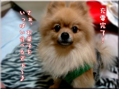 b0078073_14294110.jpg